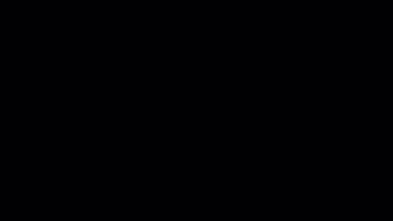 54658_08.jpg